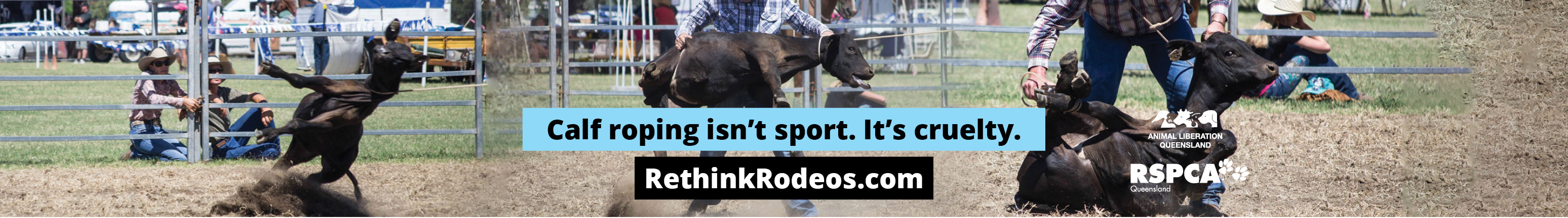 Calf roping billboard 1